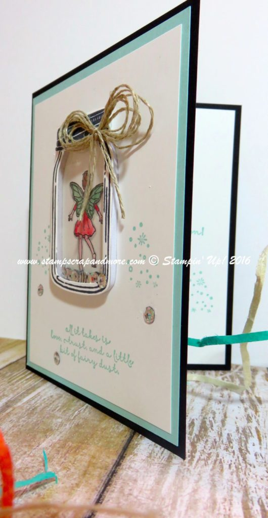 Fairy Celebration Shaker Card