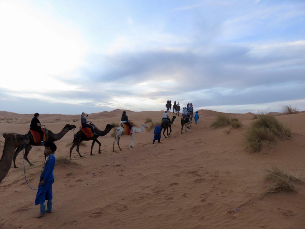 Fes to the Sahara